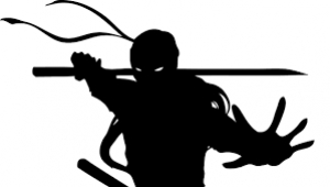 Do you have Problem Solving Ninjas in your Company?